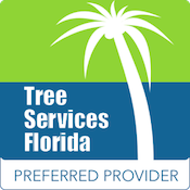 Tree Services Florida